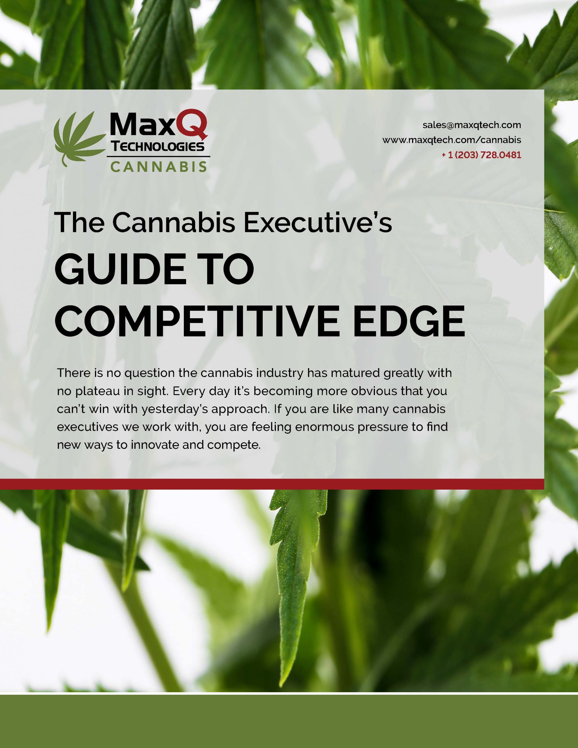 Cannabis Executives Guide to Competitive Cover