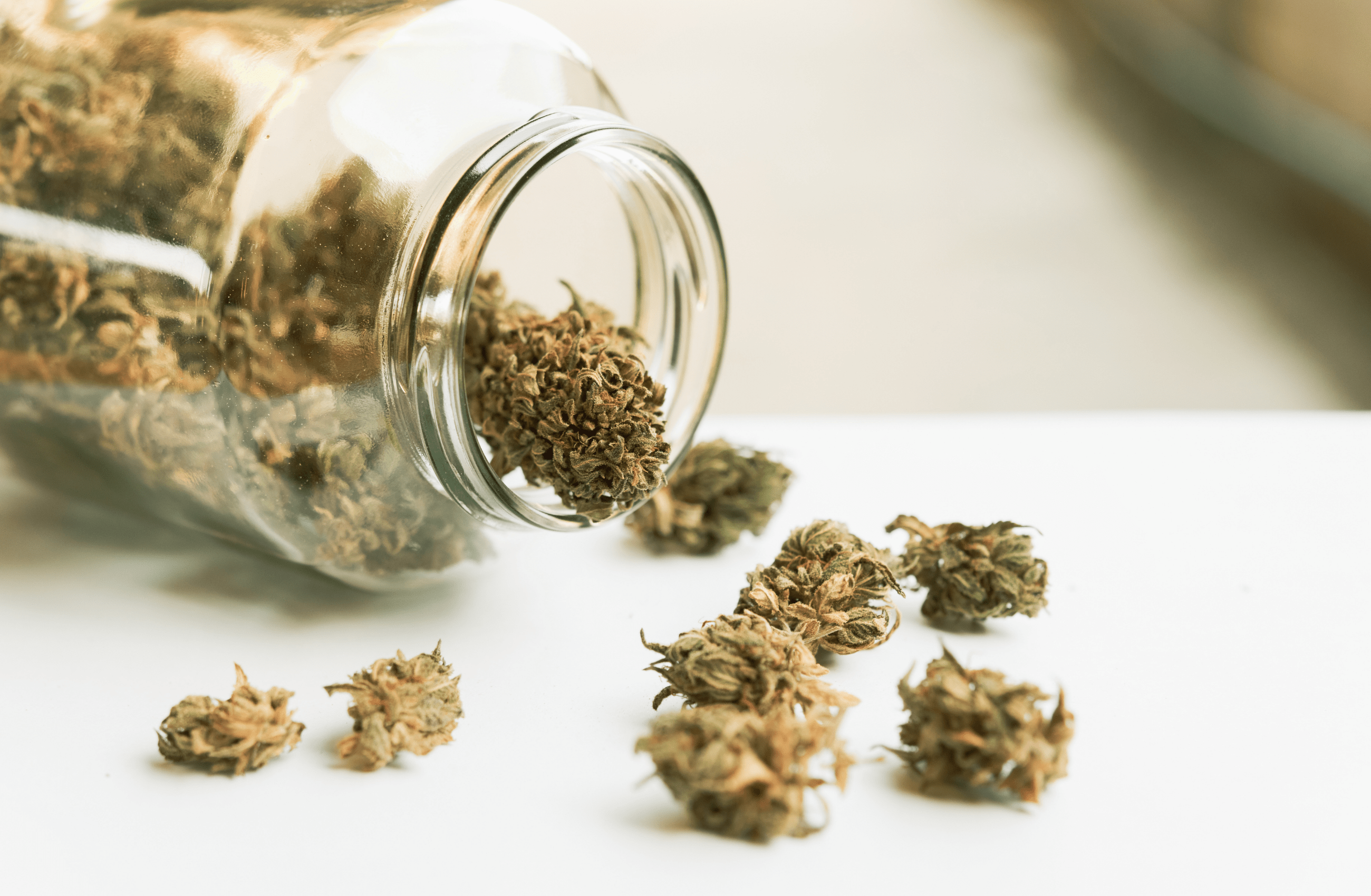 Read more about the article How Has Cannabis Manufacturing Been Impacted By Supply/Demand Imbalances?
