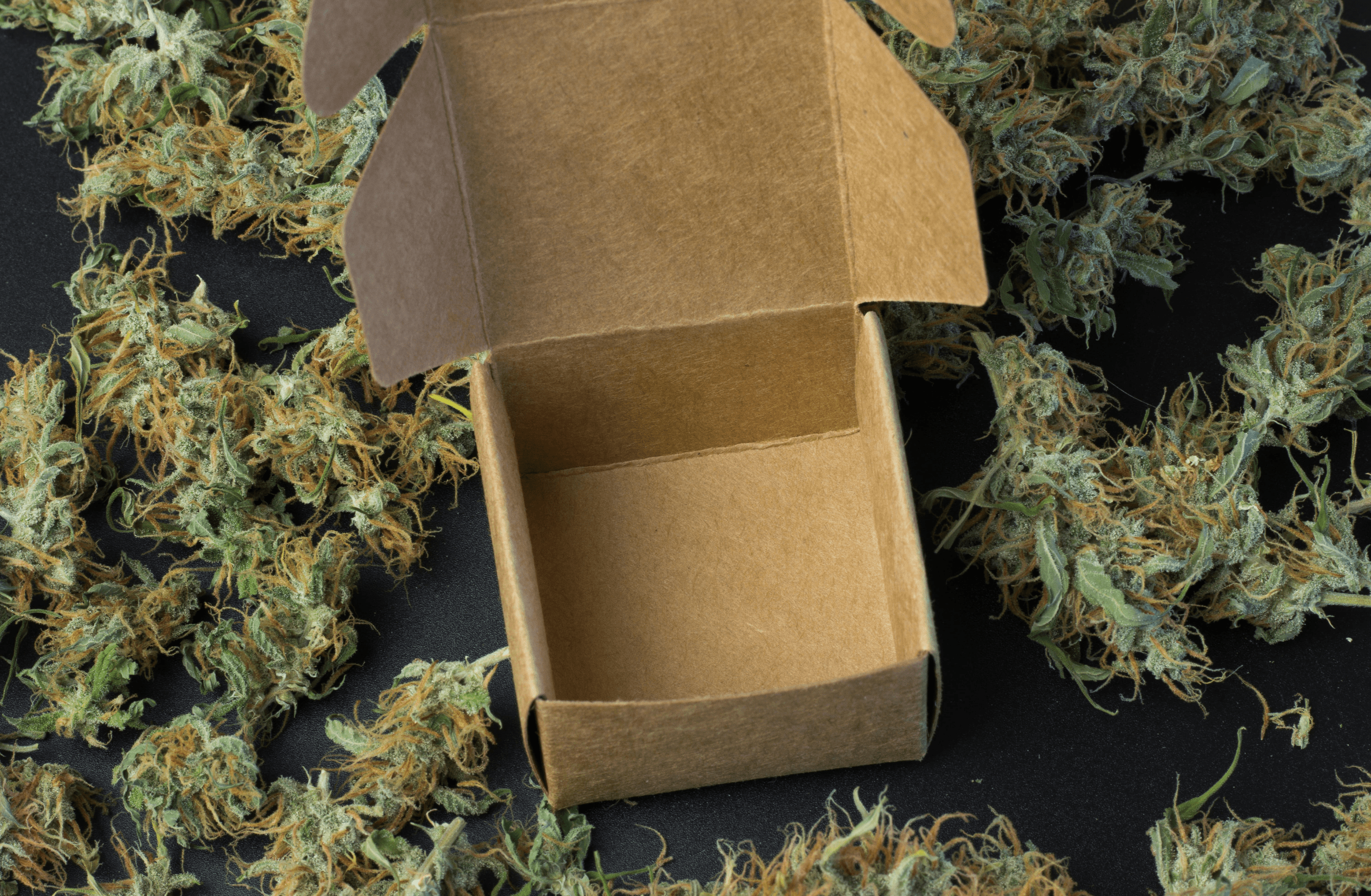 You are currently viewing The Cannabis Industry is Blazing Inside the Subscription Marketplace