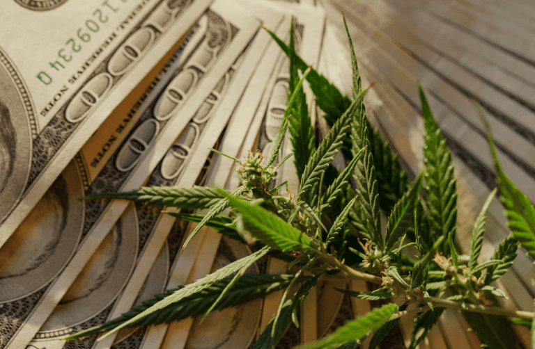 The Funds Behind the Industry: Cannabis Banking Reform